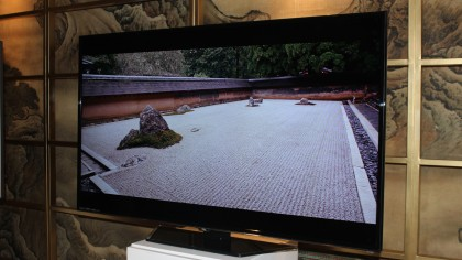 TCL 48FS4690 picture quality